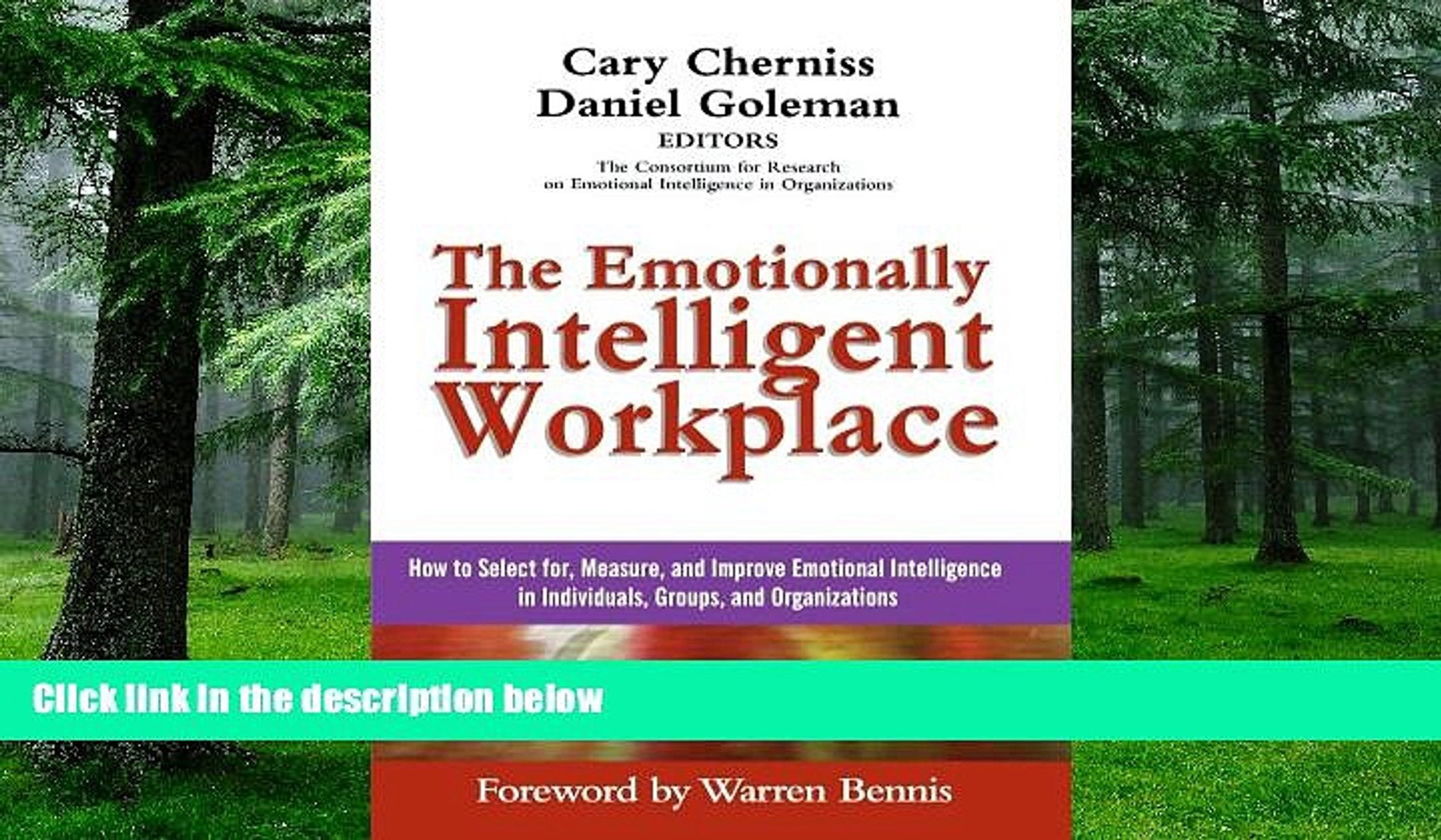 Big Deals The Emotionally Intelligent Workplace: How to Select For,  Measure, and Improve