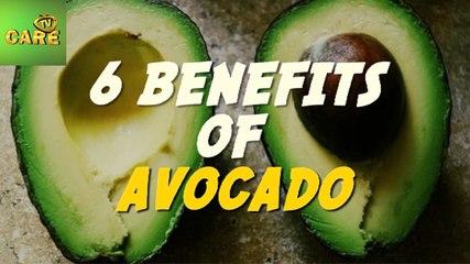 6 Benefits Of Avocado | Care Tv