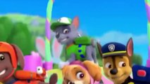 ᴴᴰ Best Animation Movies For Kids New Cartoon Movies In Urdu Pups Save a Floundering Francois-Tg4KBPLXl-16