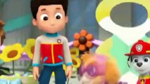 ᴴᴰ Best Animation Movies For Kids New Cartoon Movies In Urdu Pups Save a Floundering Francois-Tg4KBPLXl-22