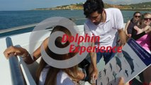 Dolphin watching & Caves by AlgarExperience (Albufeira, Algarve, Portugal)