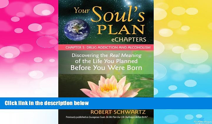 Full [PDF] Downlaod  Your Soul s Plan eChapters – Chapter 5: Drug Addiction and Alcoholism: