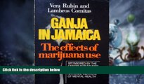 Big Deals  Ganja in Jamaica: A Medical Anthropological Study of Chronic Marihuana Use (New