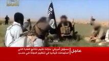 مقتل المتحدث باسم تنظيم الدولة أبو محمد العدناني
