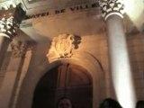 Les mille colombes s'installent en Avignon