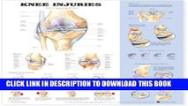 [PDF] Knee Injuries Anatomical Chart Popular Online