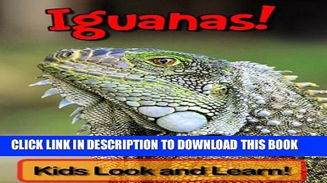 [New] Iguanas! Learn About Iguanas and Enjoy Colorful Pictures - Look and Learn! (50+ Photos of