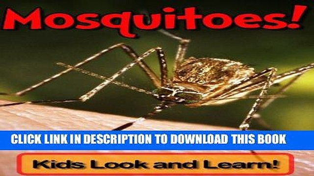 [New] Mosquitoes! Learn About Mosquitoes and Enjoy Colorful Pictures - Look and Learn! (50+ Photos