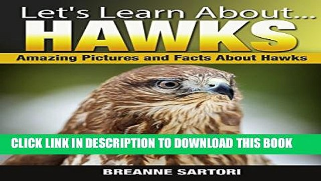 [PDF] Hawks: Amazing Picture and Facts About Hawks (Let s Learn About) Exclusive Full Ebook