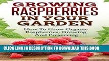 [New] Growing Raspberries In Your Garden - How To Grow Organic Raspberries, Growing and