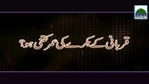 Qurbani Kay Bakare Ki Umar Kitni Ho - Qurbani Video