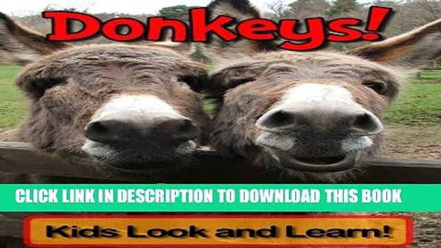 [New] Donkeys! Learn About Donkeys and Enjoy Colorful Pictures - Look and Learn! (50+ Photos of