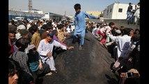 Giant Whale Appears At Karachi Beach