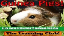 [New] Guinea Pigs! Learn About Guinea Pigs And Learn To Read - The Learning Club! (45+ Photos of
