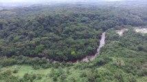 République démocratique du Congo : survol de la réserve naturelle d'Itombwe