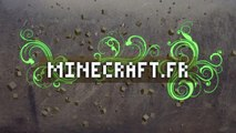 Mod Lapins Crétins | Raving Rabbids | Minecraft