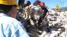 Ce chien a passé neuf jours sous les décombres après le séisme en Italie