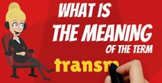 What is TRANSMITTER? What does TRANSMITTER mean? TRANSMITTER meaning, definition, explanation & pronunciation