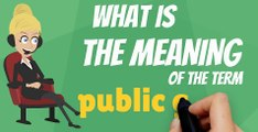 What is PUBLIC GOOD? What does PUBLIC GOOD mean? PUBLIC GOOD meaning, definition, explanation & pronunciation