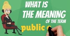 What is PUBLIC GOOD? What does PUBLIC GOOD mean? PUBLIC GOOD meaning, definition, explanation & pronunciation