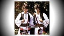 Braca Zivkovic - Ide jesen