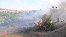 Tekirdağ Anız Yangını Ormana Sıçradı: 100 Dönüm Ormanlık Alan Kül Oldu
