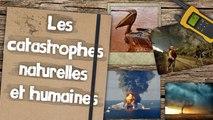 Rappels - Les catastrophes naturelles et humaines │MISTER GEOPOLITIX