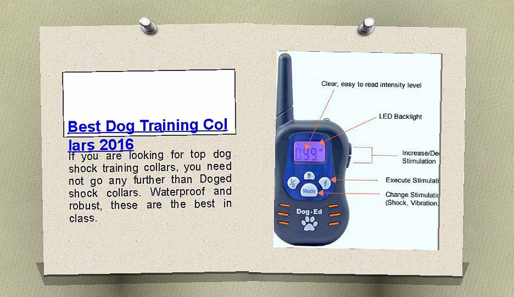 Best dog training collars 2016