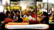 【結月ゆかり】KL One Day / 日本語解説動画