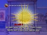 Je Fais De Toi Mon Essentiel Karaoké - Le Roi Soleil*