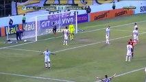 Botafogo vs Fluminense 1-0 All Goals (Campeonato Brasileiro )2016