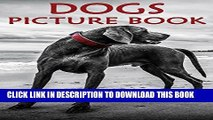 [PDF] Kids Books: Dog Picture Books for Kids [kids picture book] Full Online