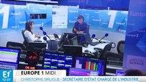 """Le PDG d'Alstom convoqué """"dès cet après-midi"""" à Bercy"""