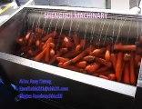 Máy rửa củ cà rốt QX 608, máy rửa củ cải, máy rửa khoai lang khoai môn