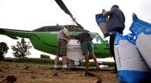 Euralis sème par hélicoptère : les explications de Pascal Lalanne, responsable agronomie grande culture