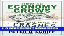 [PDF] How an Economy Grows and Why It Crashes Popular Collection