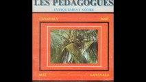 Les Pedagogues - Belle Doudou