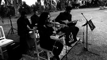 Is this love - instrumental Violino - Bob Marley - GROOVE A RIGOR