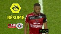 EA Guingamp - Montpellier Hérault SC (1-1)  - Résumé - (EAG-MHSC) / 2016-17