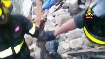 Italie, deux chats sont retrouvés vivants deux semaines après le séisme