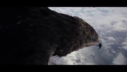 General Elektriks - Migration Feathers [Clip Officiel]