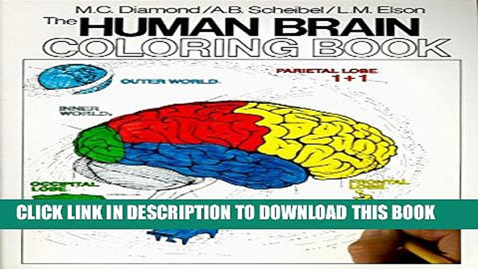 [PDF] The Human Brain Coloring Book (Cos, 306) Full Colection