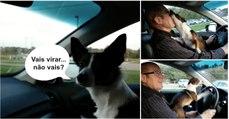 Cão fica extremamente feliz assim que percebe que o seu dono o está a levar para o parque