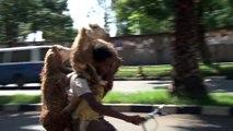 Ce berger porte 2 moutons à Vélo en Ethiopie !