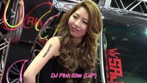 New Song 2016 Mandarin Chinese Disco House Music - Yi Yi Ge Shang Xin Remix 2016 by DJ Pink Skw (LJP)