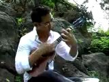 "Jake Shimabukuro plays ""While My Guitar Gently Weeps"""