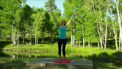 Colleen Saidman Yoga for Weight Loss - Total Body Flow | Yoga | Gaiam