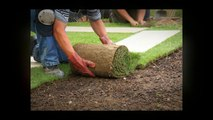 Landscaping Contractors in Las Vegas - Things To Consider When Hiring A Landscaping Contractors