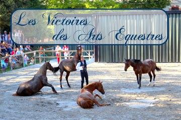 Événement : les Victoires des Arts Équestres