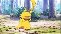 Pokémon Générations - Épisode 1 - L'aventure